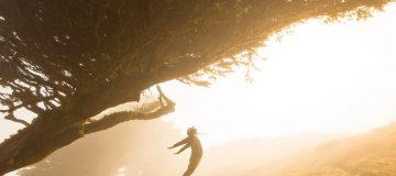 Sprung gegen die Sonne