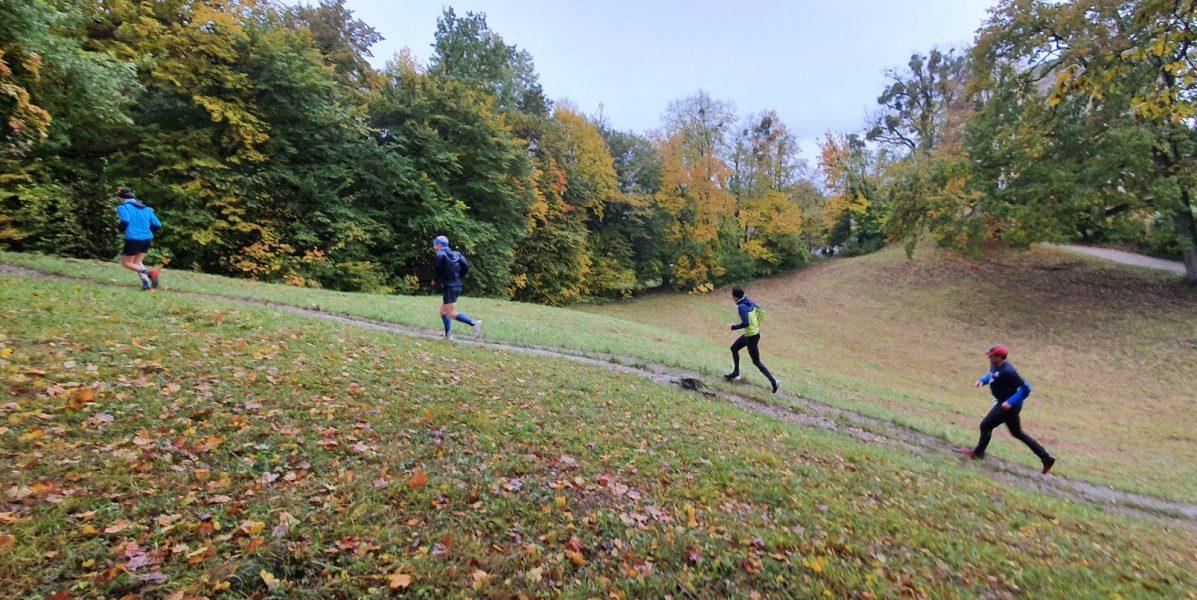 zu sehen: vier Läufer hintereinander, Herbstlandschaft